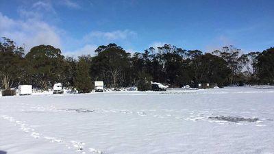 Snowfall in Miela, Tasmania. (Great Lake Hotel/Facebook)