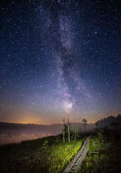 Night, Finland (2021)