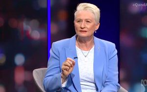 'That's a very leaky sieve': Kerryn Phelps questions NSW-Victoria coronavirus border management on Q&A