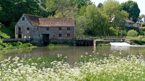 Ancient mill turned museum grinds back to life to help ease flour shortage