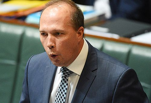 Peter Dutton targets Joyce over gay marriage