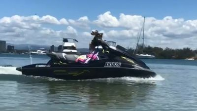 Maltese terrier steers jet ski through water