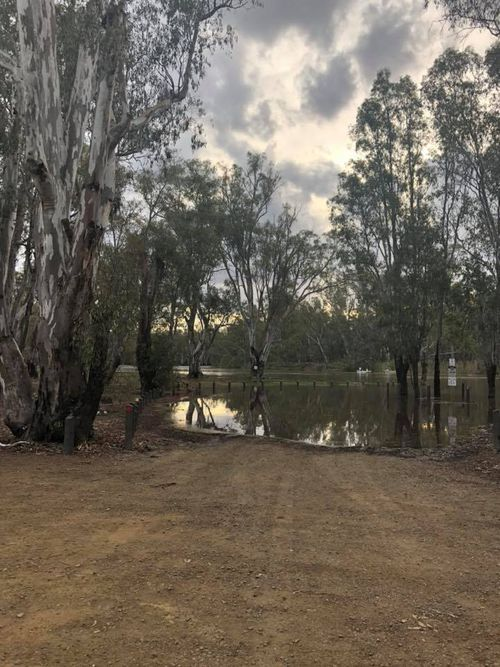 Recent deliveries of water along the Murray River has resulted in flooding in the national park.