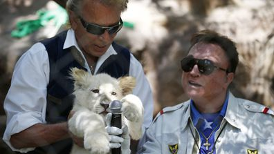 Siegfried Fischbacher, left, holds up a white lion cub as Roy Horn holds up a microphone during an event to welcome three white lion cubs to Siegfried & Roy's Secret Garden and Dolphin Habitat, in Las Vegas ( Photo: July 2014)