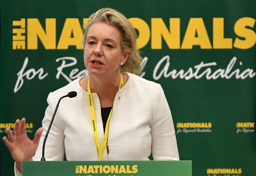 Senator Bridget McKenzie, the deputy leader of the National Party, says tax relief is crucial for export industries like agriculture and mining