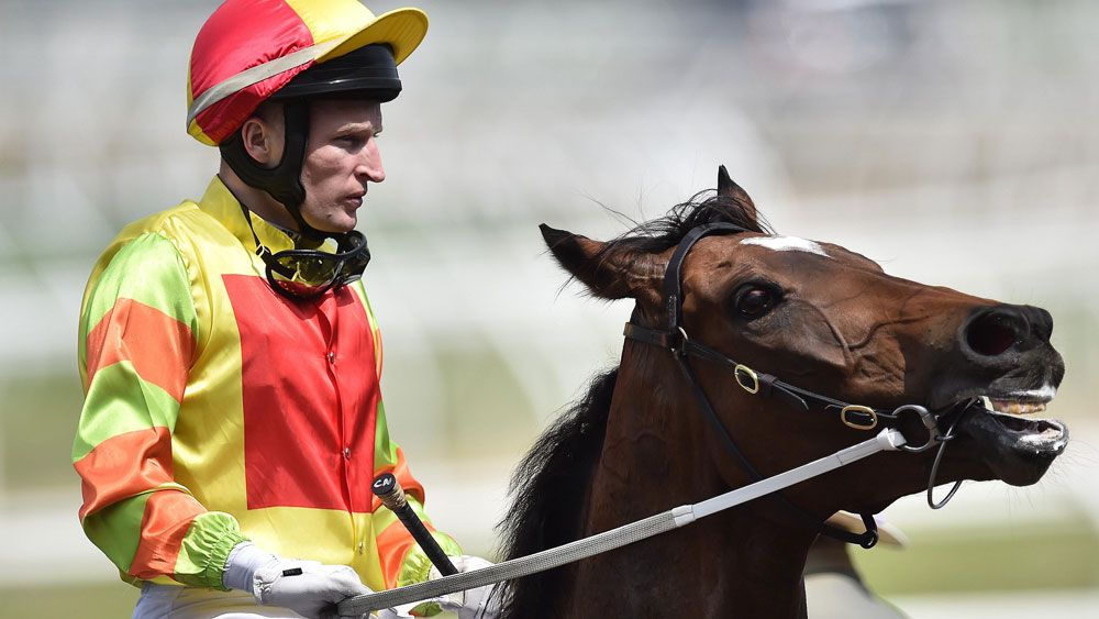 Lankan Rupee will chase another Group One win. (AAP)