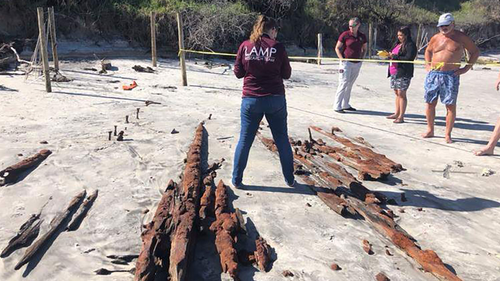 Researchers examine the timbers from the shipwreck.