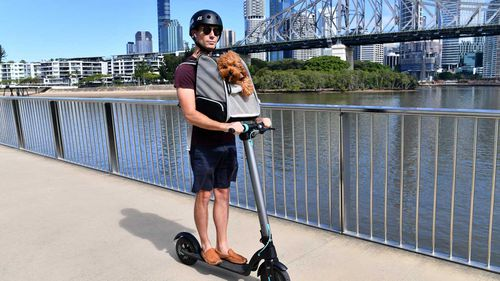 Michael Snowden and his pet cavoodle Snooks are seen riding his electric scooter along side the Brisbane River in Brisbane.