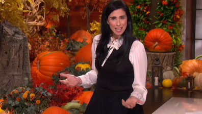Sarah Silverman addresses the Ellen audience in her opening monologue.