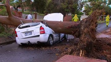 Hail, rain, lightning and floods have struck Perth in a shock weather event.