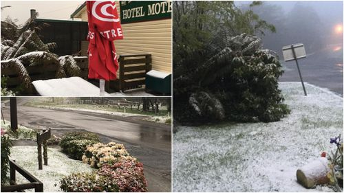 Snow arrives at The Otways in Victoria