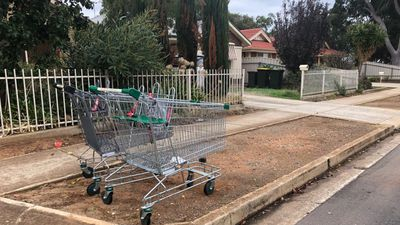 'We've had enough': Adelaide council calls time on trolley dumpers