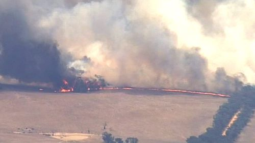 Water bombing helicopters and ground crews have been employed to battle the Moyston blaze. (9NEWS)