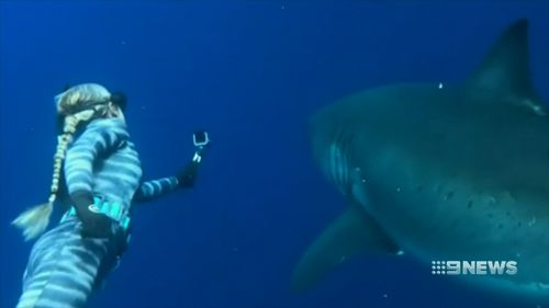Kayleigh Burns said people have the wrong idea about sharks, after meeting the great white close up for the first time.