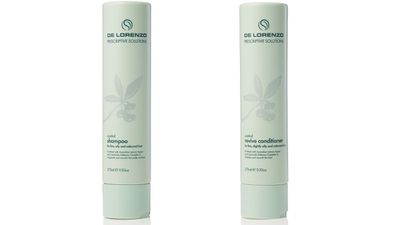 "<p>For oily hair:</p><p><a href=""http://www.delorenzo.com.au/ranges/control-shampoo/"" target=""_blank"">Control Shampoo and Conditioner, $29.50 each,&nbsp;De Lorenzo.</a></p>"