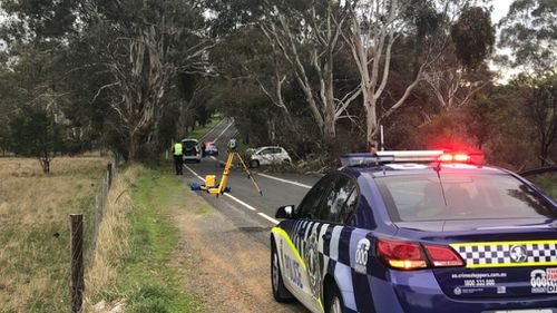 Emergency services at the scene in One Tree Hill Road. (9NEWS/Reece D'Alessandro)