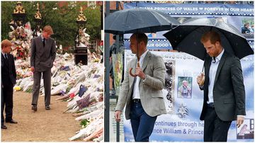 William and Harry make surprise visit to Diana tributes 20 years on