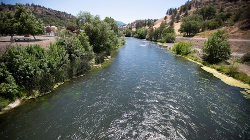 Baby salmon are dying in the thousands in one river and an entire run of endangered salmon could be wiped out in another as blistering heat waves and extended drought in the US West raise water temperatures and imperil fish from Idaho to California.