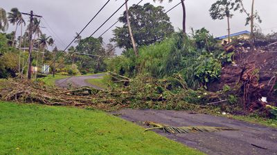 A huge tree lays across a road after taking down power lines. (AP)