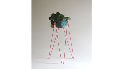 12 luxe to less plant stands