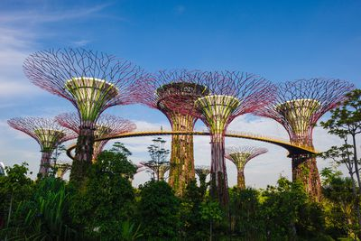 <strong>Supertree Grove, Gardens by the Bay</strong>