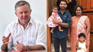 Anthony Albanese has called for the Tamily family to be allowed to stay in Australia.