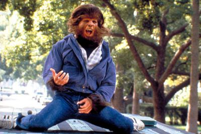 Forget the virtually hairless Taylor Lautner, Michael J. Fox packed on the real facial hair as an appropriately hirsute teen werewolf. This little critter has re-emerged as a new US TV series.