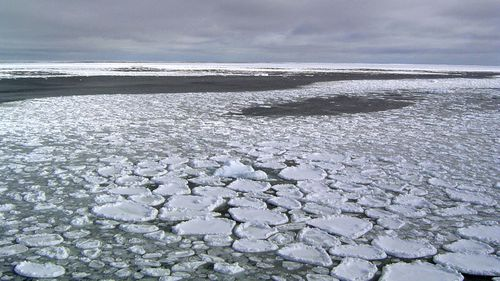 This January 2017 photo provided by Ted Scambos shows sea ice on the ocean surrounding Antarctica during an expedition to the Ross Sea. Ice in the ocean off the southern continent steadily increased from 1979 and hit a record high in 2014. But three years later, the annual average extent of Antarctic sea ice hit its lowest mark, wiping out three-and-a-half decades of gains, and then some, according to a study in the Proceedings of the National Academy of Sciences on Monday, July 1, 2019.