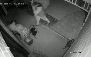 Teddy bear stolen from family's front porch: 'It's just disappointing'