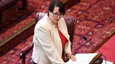 Safe access zone abortion bill to be debated in NSW upper house