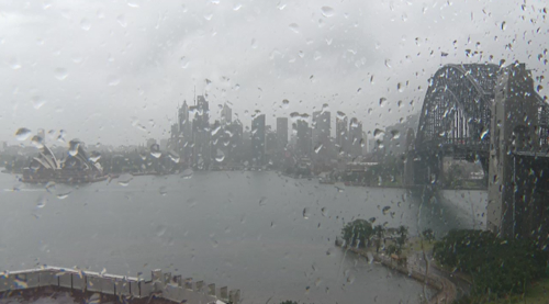Sydney Harbour is shivering through icy rain and winds with flooding causing issues for transport around the city.