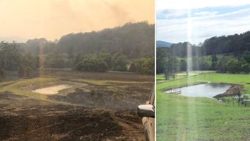 Hollywood actor Russell Crowe posted two pictures, taken 10 weeks apart, to show how his NSW property has bounced back after it was hit hard by bushfires.