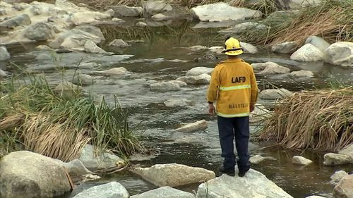 More than 100 volunteers searched throughout the night for the boy, with the discovery made around 5.30am. (9NEWS)