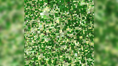 """Finney County in southwestern Kansas is now irrigated cropland where once there was shortgrass prairie. Common crops are corn, wheat and sorghum. Green areas in the image are healthy vegetation. Light colored cultivated fields are fallow or recently harvested."" (NASA/METI/AIST/Japan Space Systems, and U.S./Japan ASTER Science Team)"