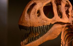 Groundbreaking discovery has forced scientists to re-think famous dinosaur