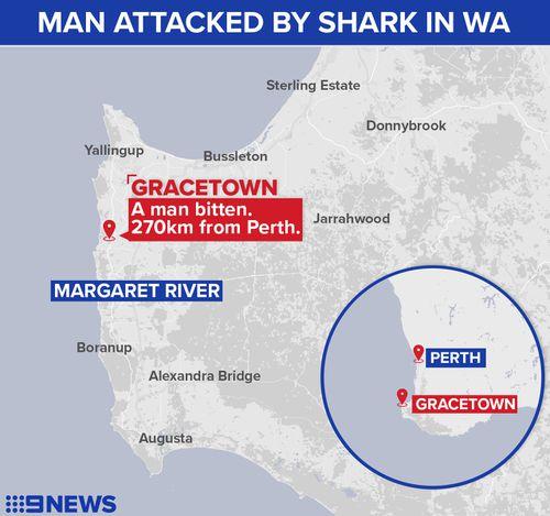 Mr Travaglini was attacked in Gracetown, WA. (9NEWS)