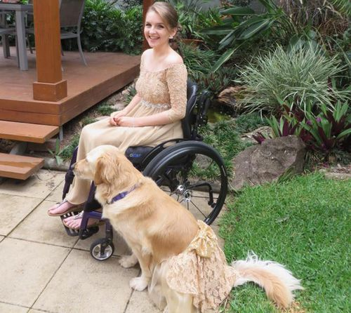 Queensland teen coordinates formal outfits with her assistance dog for formal