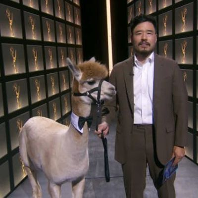 2020: Randall Park presents with an alpaca