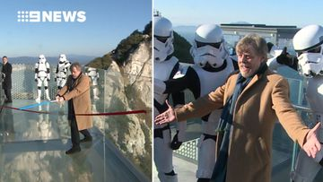Luke Skywalker actor opens new Skywalk