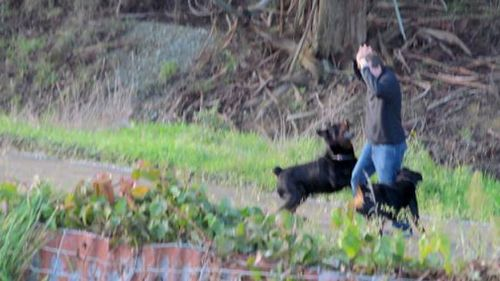 New Zealand man Oliver Beaumont, 22, who lives with Autism was viciously attacked by two Rottweilers over the weekend. Picture: Supplied.