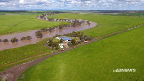 Teasing showers came a day after the Federal government dedicated a relief package to farmers. Picture: 9NEWS