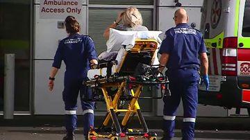 Dog attack victim hospitalised