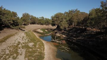 Some NSW towns could run dry in just months in the worst-case scenario.