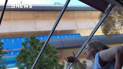 Sky rail: Hell above homes as 'oil rain' coats cat and backyard
