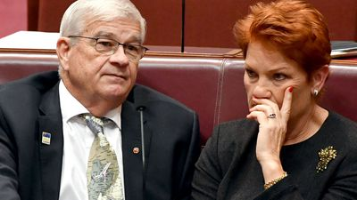 One Nation senators bungle Senate voting