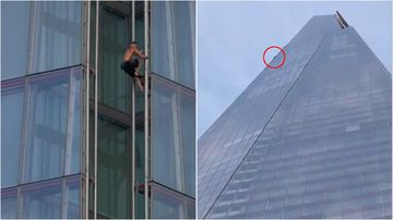 A daredevil has scaled London's tallest building with no safety harness.