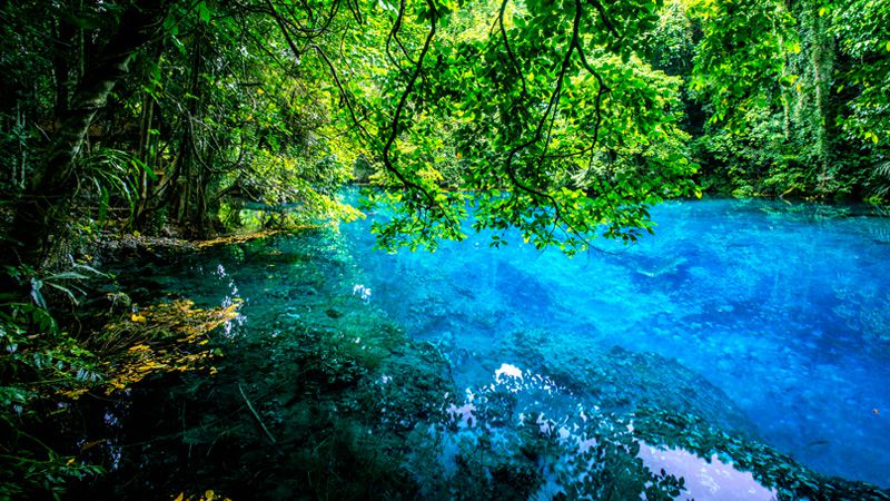 The three main blue holes on Espiritu Santo are all located conveniently close to each other.
