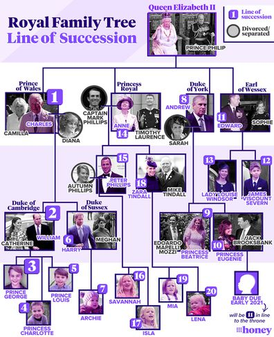 A handy guide to the British royal family tree and line of succession.