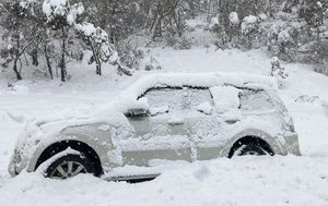IN PICTURES: Wild weather thrashes NSW coast while snow blankets mountain ranges