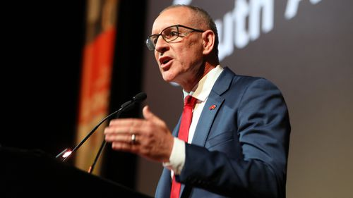 Mr Weatherill pledged $35 million towards a plan to expand the state's existing fibre network (AAP).